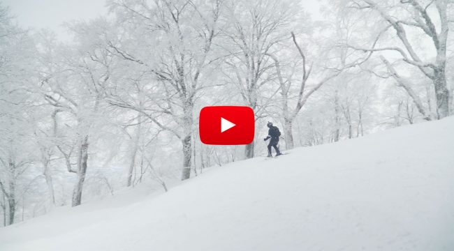Nozawa Snow Report Sunday 21st January 2018