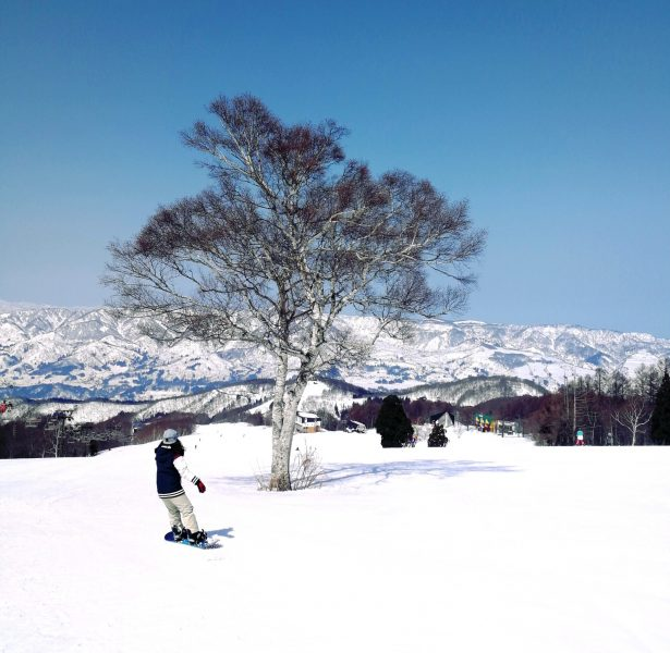 Slide Into Nozawa Spring