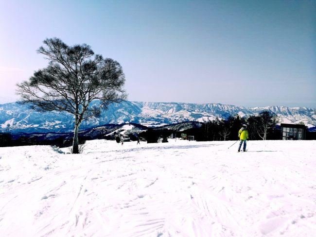 April Snow For Nozawa Onsen?