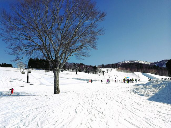 April Skiing Nozawa Style