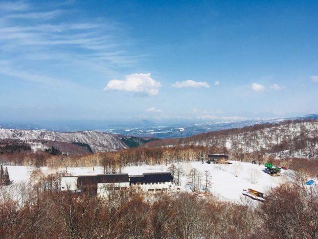 Snow Under Sunny Nozawa Skies