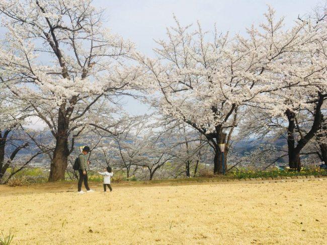 Late Season Nozawa Snow
