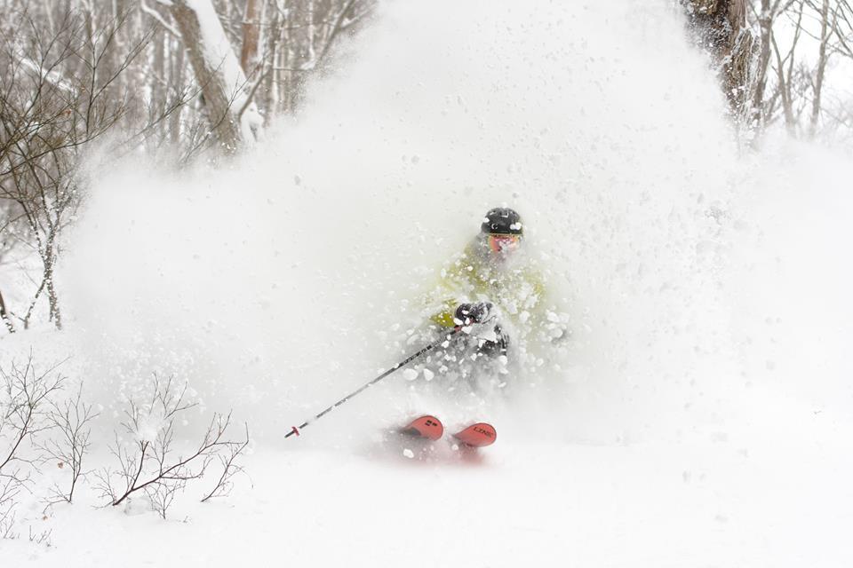 What Is A Powder Ski Nozawa Holidays