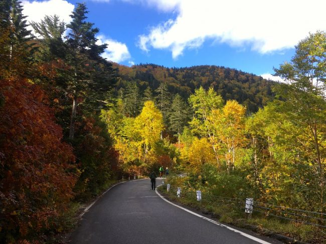 Autumn Hiking Nagano Japan