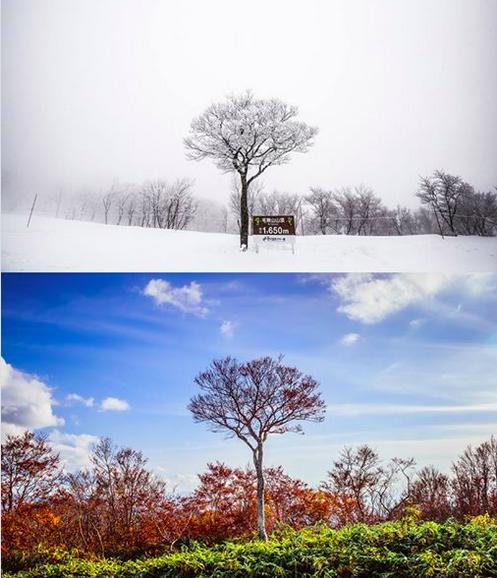 Nozawa Onsen Summer v Winter