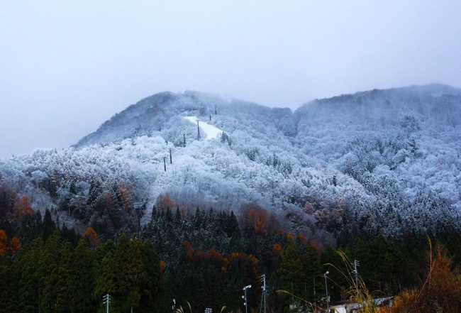 Nozawa Onsen First Snow Report 2019 Season