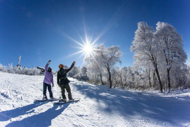 Snow Board Nozawa Onsen Style