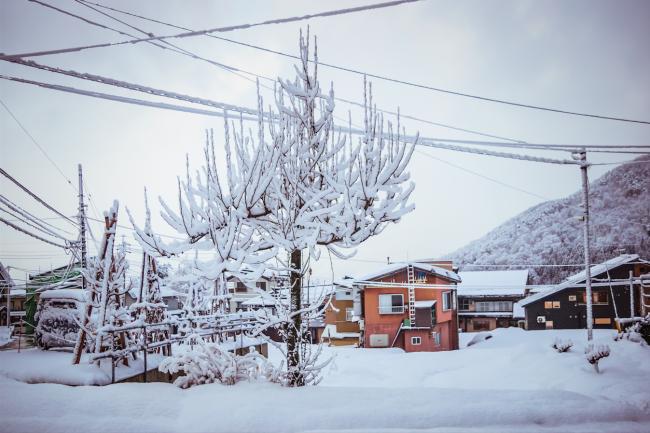 Winter in Nozawa