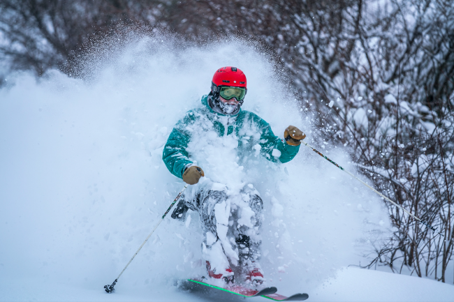 Nozawa Onsen Ski Powder