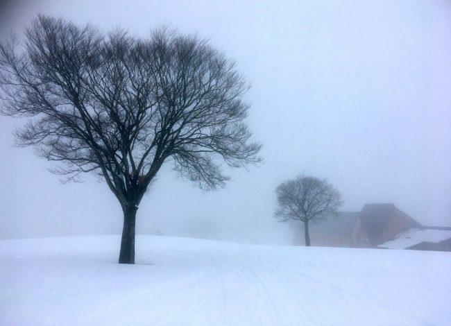 May Snow Nozawa Japan