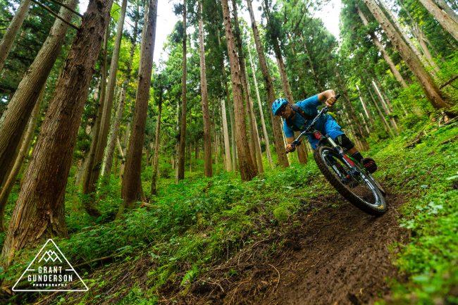 Singe track Mountain Biking Nozawa Onsen