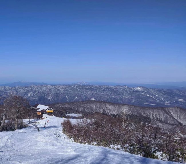 Snow Report Nozawa Onsen 27th December 2019