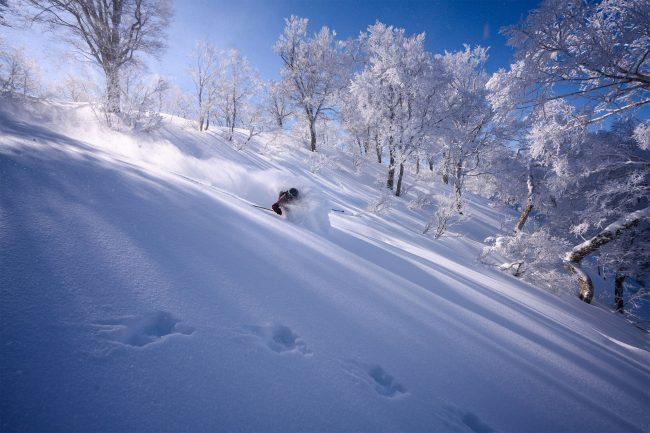 Fresh Tracks Nozawa Onsen Japan