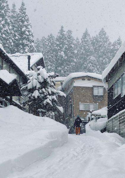 So Much Snow Nozawa
