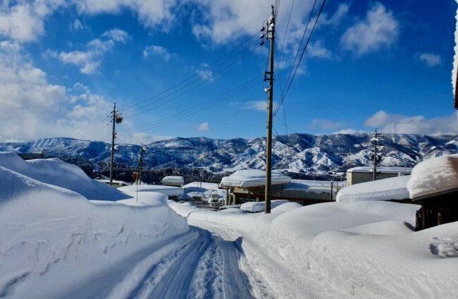 Snow Report Nozawa January