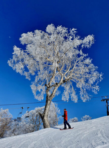 Nozawa Onsen Discounts Ski Japan