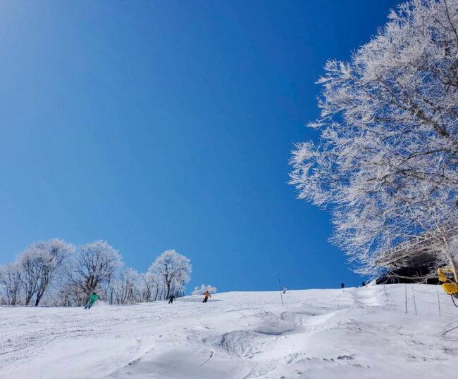 Ski Work Onsen Nozawa Japan