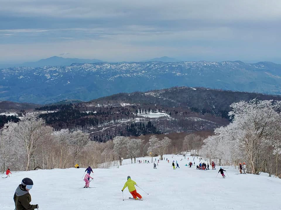 Best Place to Visit Japan