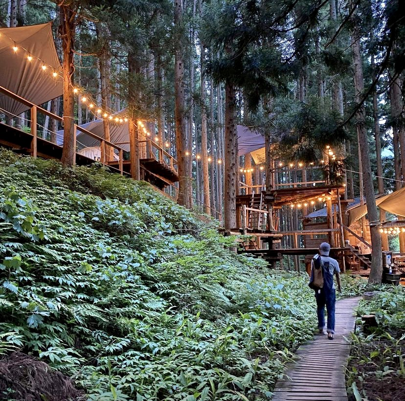 Tree House Nozawa Japan